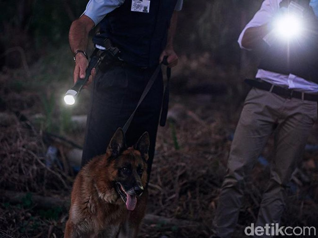 Aniaya Warga hingga Tewas, Anggota DPRD Dharmasraya Jadi Buron Polisi