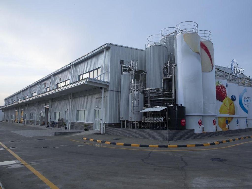Pabrik Ini Produksi 260 Ton Yogurt Per Tahun