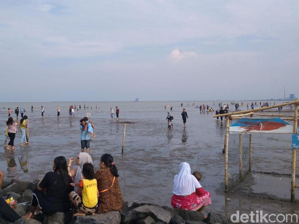 Foto: Libur Akhir Pekan di Cirebon, Ayo ke Pantai Kejawanan!