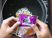 Viral! Chef Indonesia Ini Bikin Nasi Goreng dengan Campuran Makanan Kucing