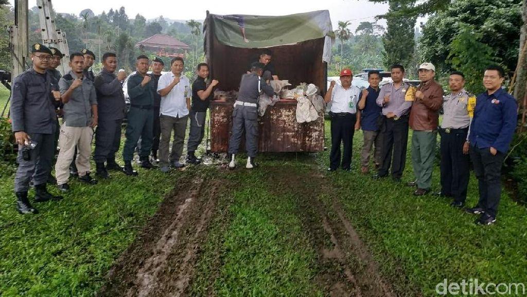 Foto: 92 Merak Eksotis yang Disembunyikan di Vila Mewah Bogor