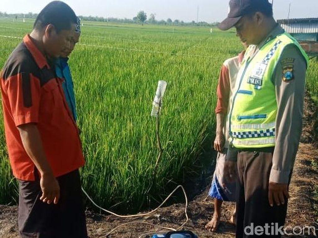 Petani Lamongan Tewas Kesetrum Jebakan Tikus yang Dipasang di Sawah