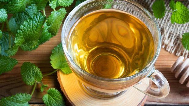 Ilustrasi teh herba