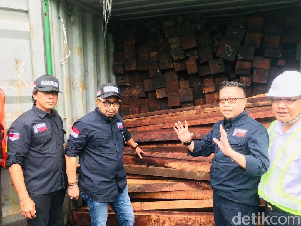 Penyelundupan 40 Kontainer Kayu Ilegal Asal Papua Barat Digagalkan