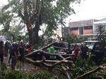 Puting Beliung di Bogor, Puluhan Rumah Rusak