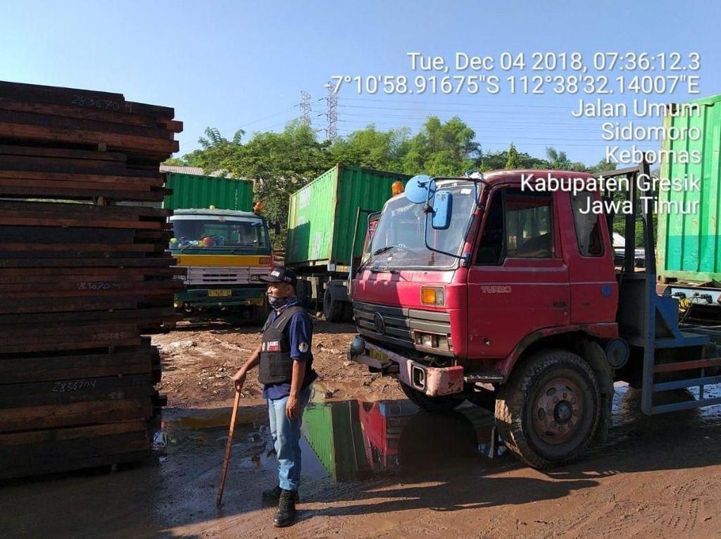 KLHK Amankan Kayu Ilegal Rp 12 Miliar dari Sorong