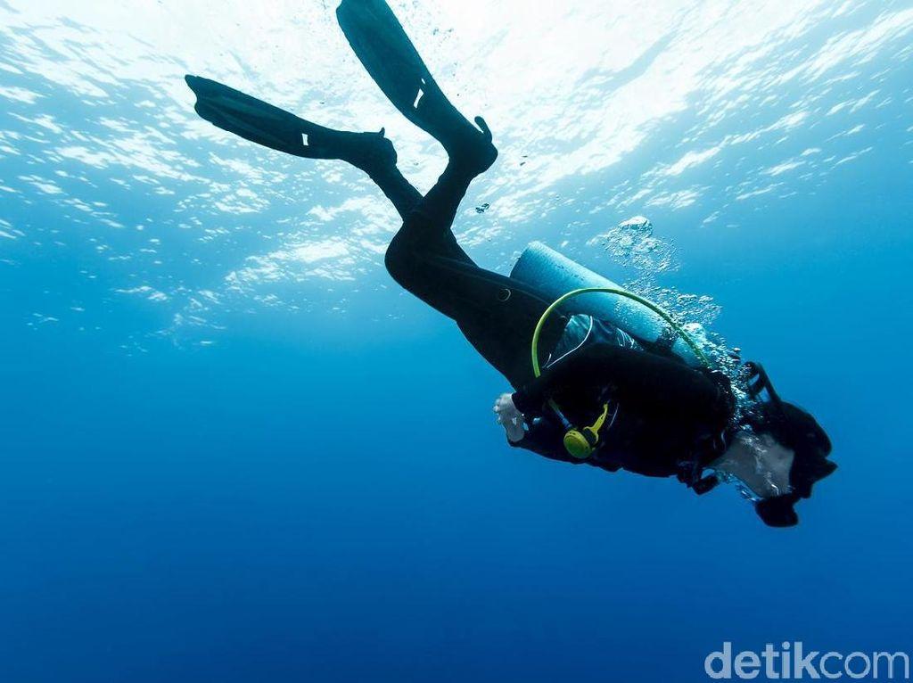 6 Spot Diving Terbaik di Indonesia yang Instagramable