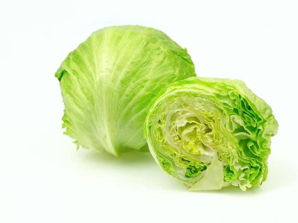 Perlu Tahu! Sederet Nutrisi Fantastis dalam Semangkuk Sayur Kol (1)