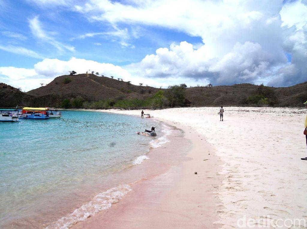 Foto: Pantai Pink Sungguhan Ada di Indonesia