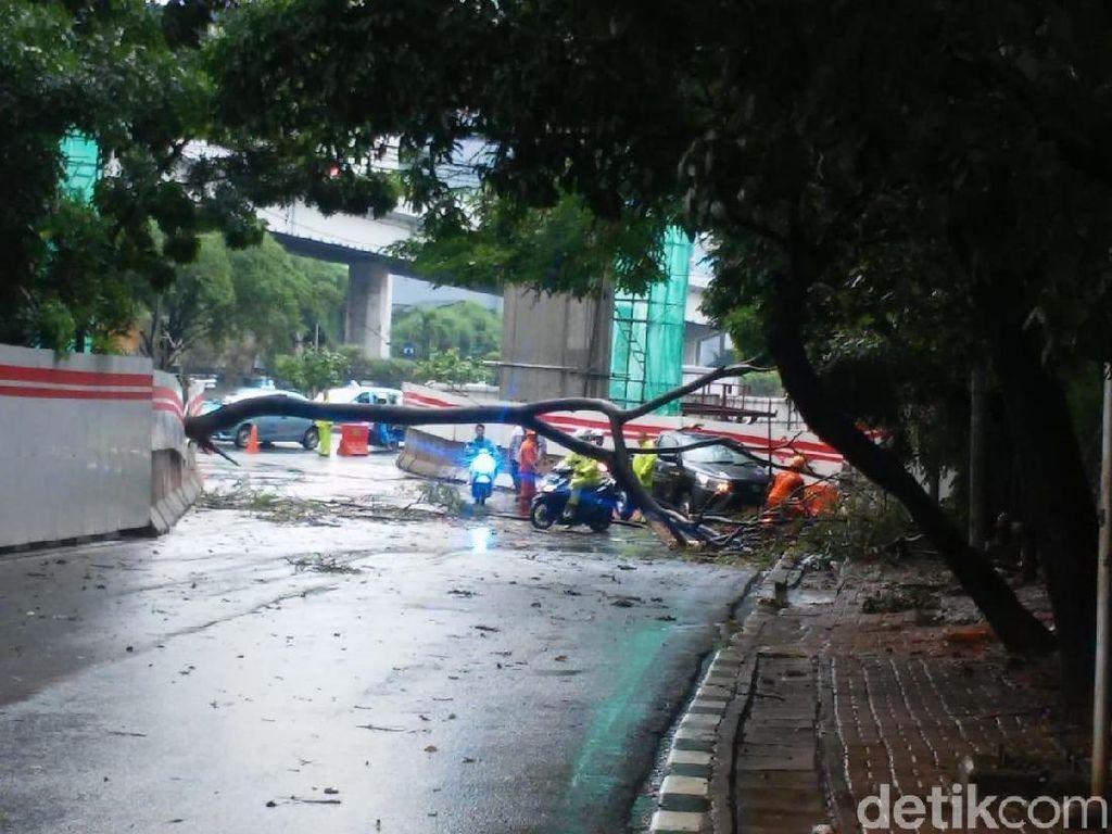 Diterjang Hujan Angin, Pohon Tumbang di Tendean