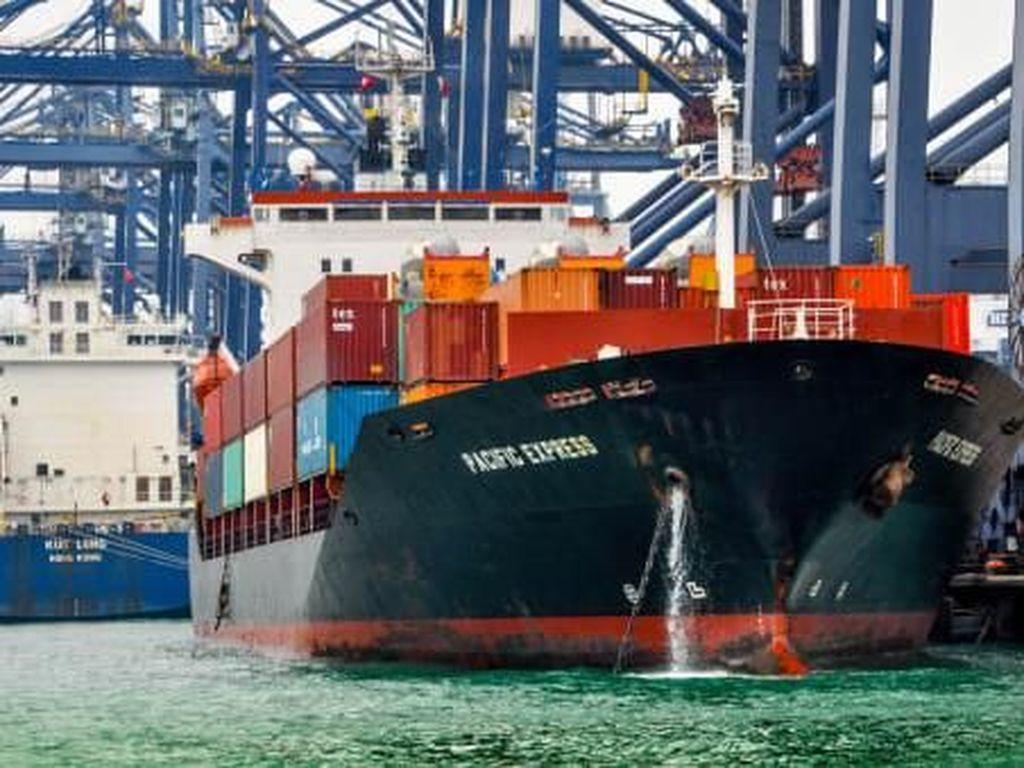 Foto: Wisata Pelabuhan Kontainer Terbesar Sedunia
