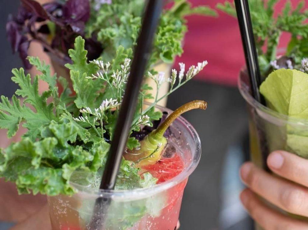 Cantiknya Minuman Soda Berhias Susunan Bunga Segar