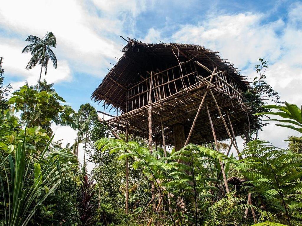 Demi Hindari Iblis, Suku Ini Masih Tinggal di Rumah Pohon