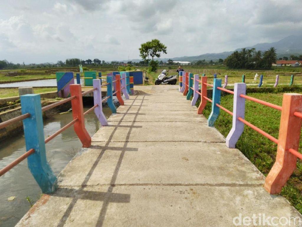 Foto: Jembatan Pelangi di Antara Sawah & Kebun Ciamis