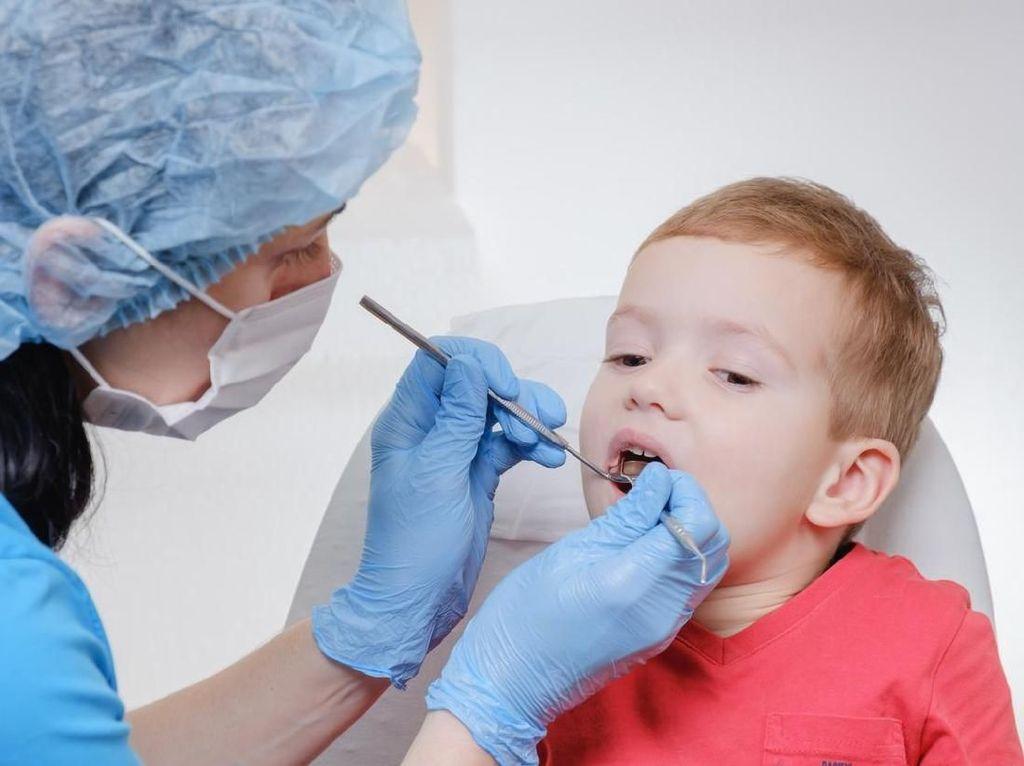 Kapan Waktu yang Tepat untuk Anak Belajar Merawat Gigi?