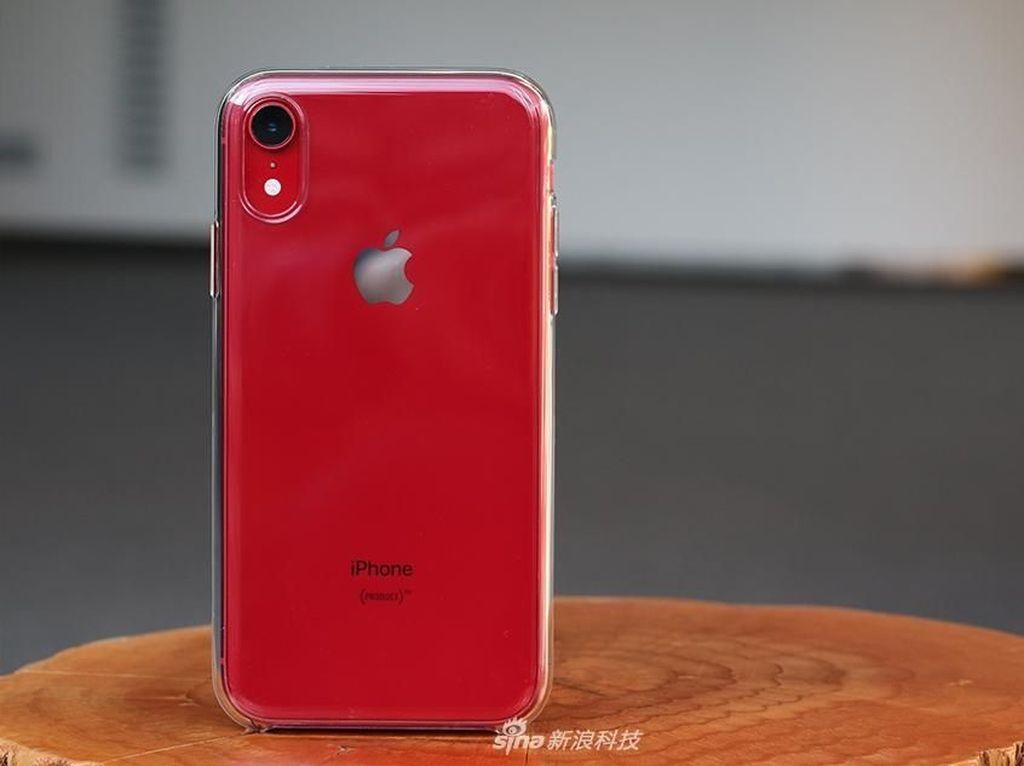 Spesifikasi dan Harga Terbaru iPhone XR September 2021