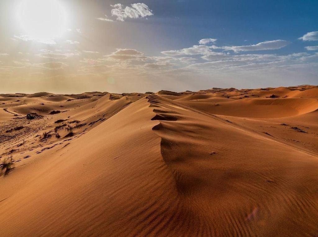 Ini 5 Fakta Sahara, Gurun Kering yang Dulunya Padang Rumput