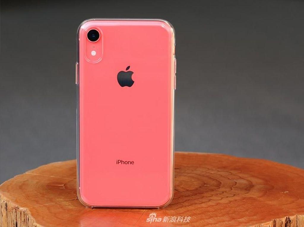 Hujan Diskon Dikhawatirkan Bikin iPhone XR Turun Gengsi
