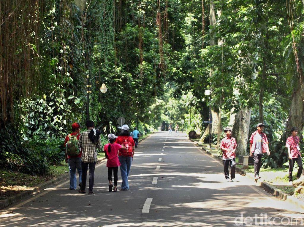 Terpopuler: Wisata Ramah Kantong di Bogor dan Neraka Dunia di Kamboja