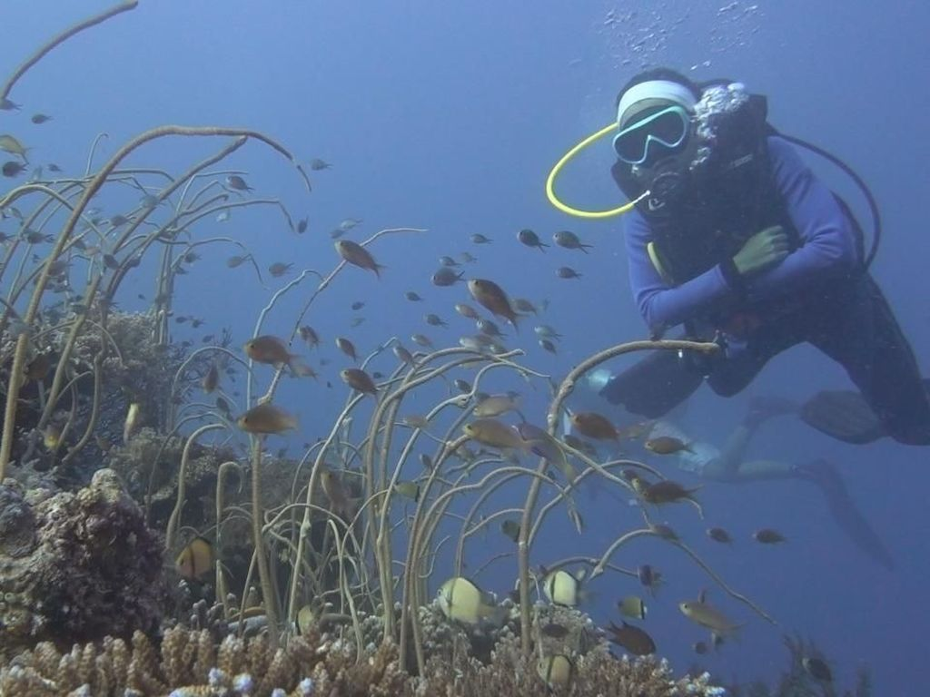 Foto: Kepulauan Selayar Seindah Surga