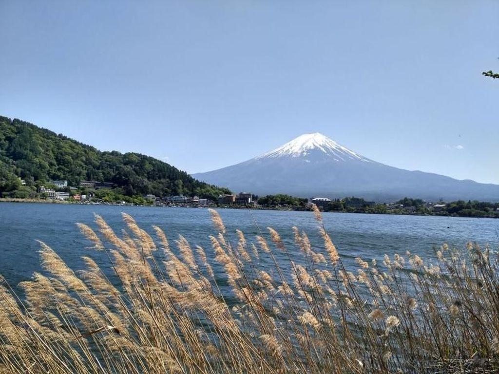 Aneka Spot Terbaik untuk Melihat Gunung Fuji