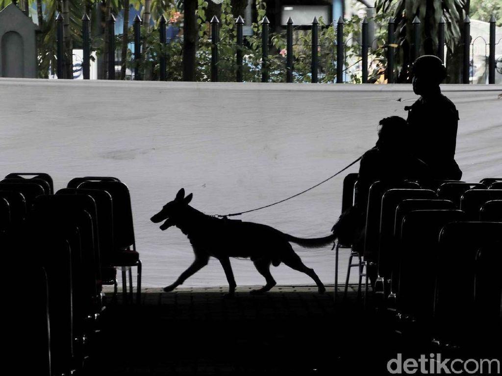 Bea Cukai Usul Anggaran Rp 3,6 T, DPR: Untuk Beli Anjing?