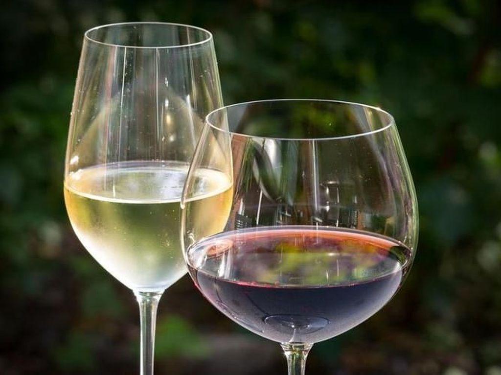 Terbaru! Air Putih Rasa Wine yang Tak Bikin Mabuk