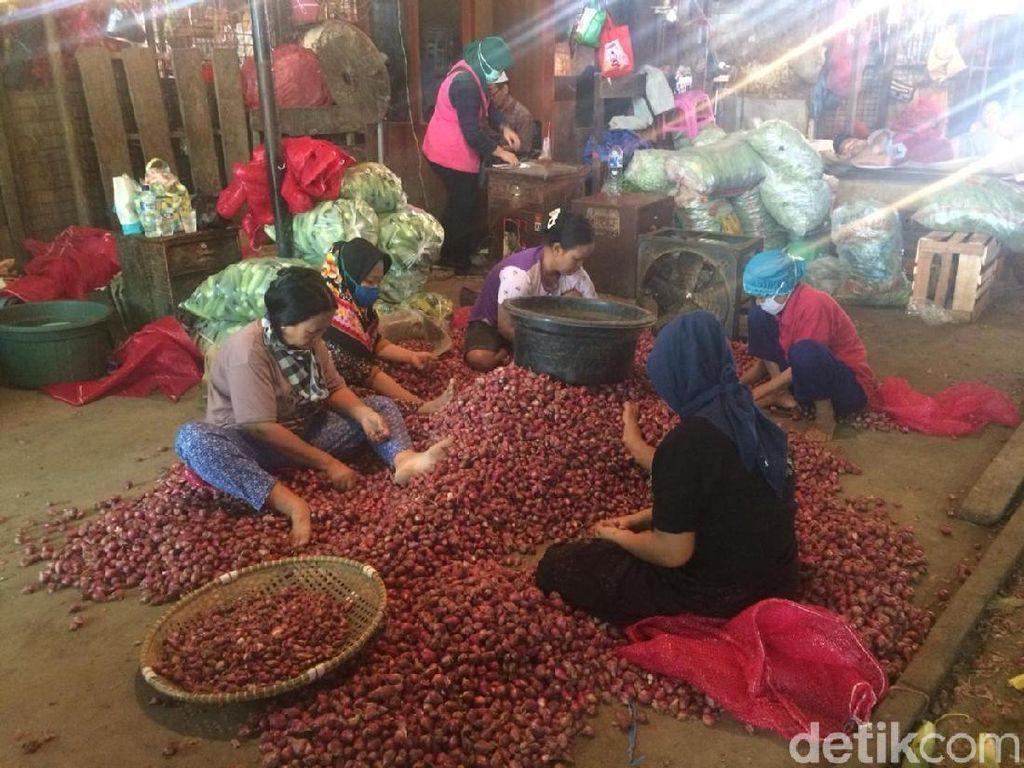 Musim Hujan, Harga Bawang Merah Dijual Rp 28.000/Kg