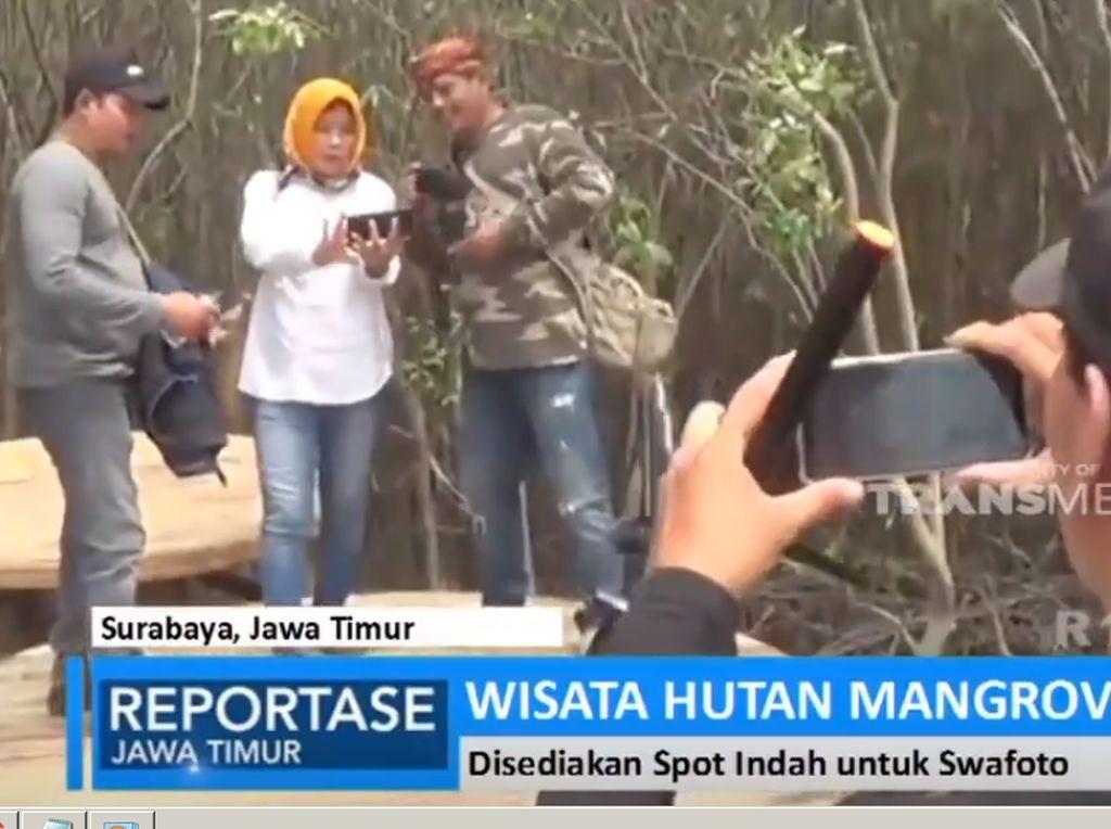 Alternatif Wisata Tahun Baru: Hutan Mangrove Surabaya