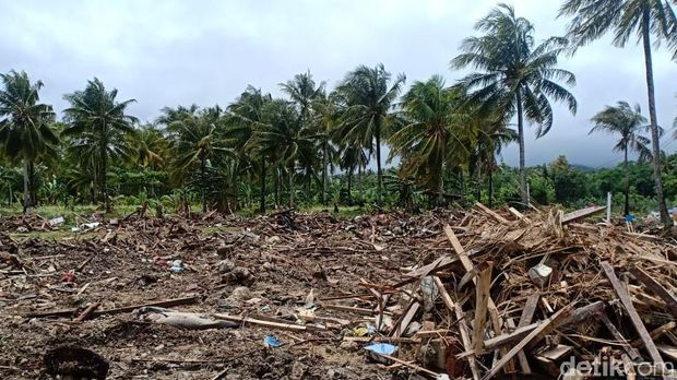 Rumah-rumah di Kecamatan Sumur, Banten, rata dengan tanah /