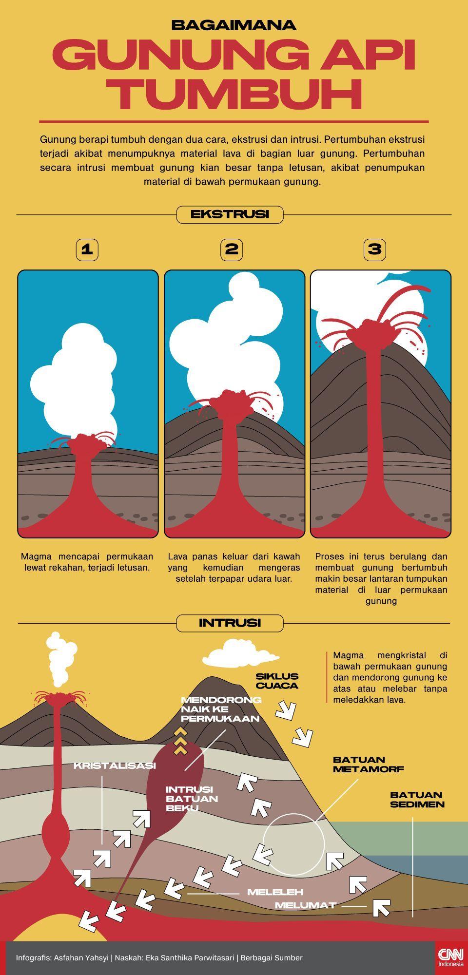Infografis bagaimana Gunung Api Tumbuh