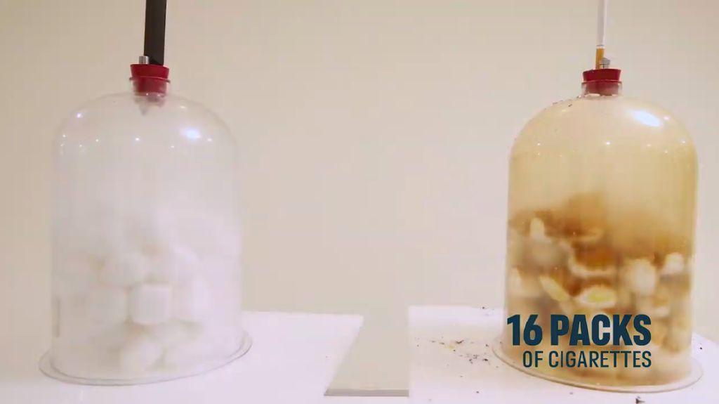Eksperimen Ini Tunjukkan Bukti Visual Dampak Vape Vs Rokok Konvensional