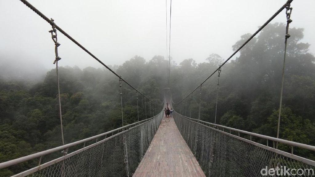 Foto: Jembatan Gantung Situ Gunung yang Viral di Medsos