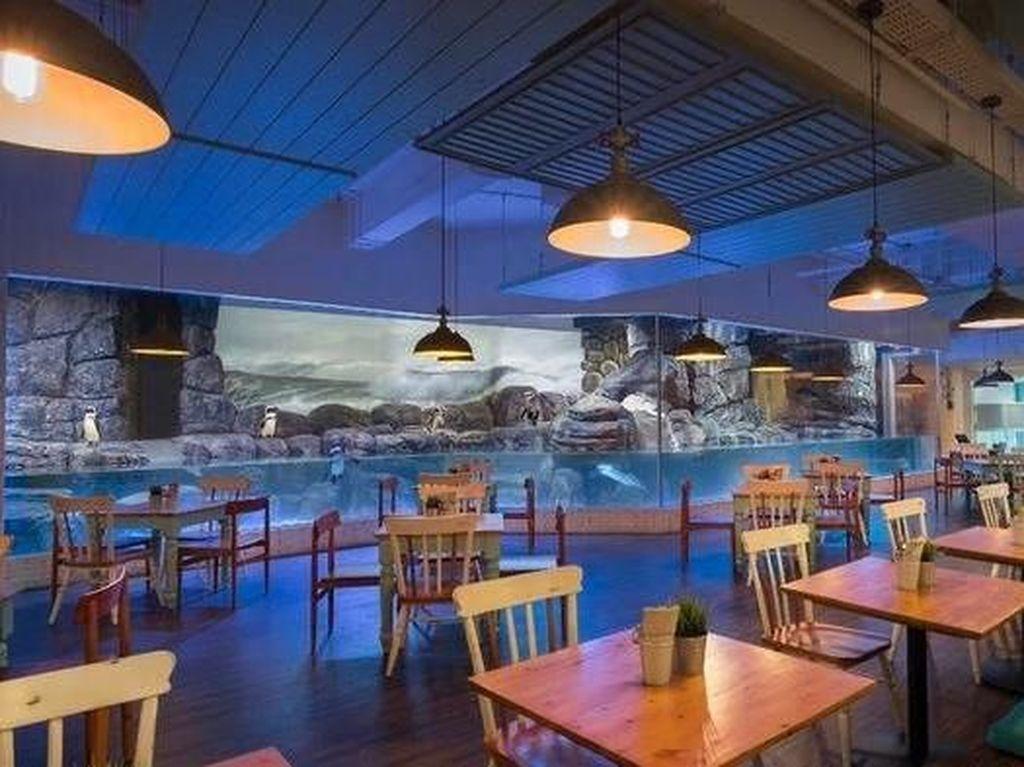 Kumpul Keluarga Akhir Tahun Bisa Makan di Resto yang Cozy Ini