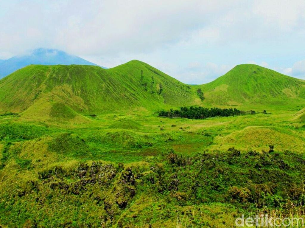 Foto: Bukit Teletubbies di Bondowoso