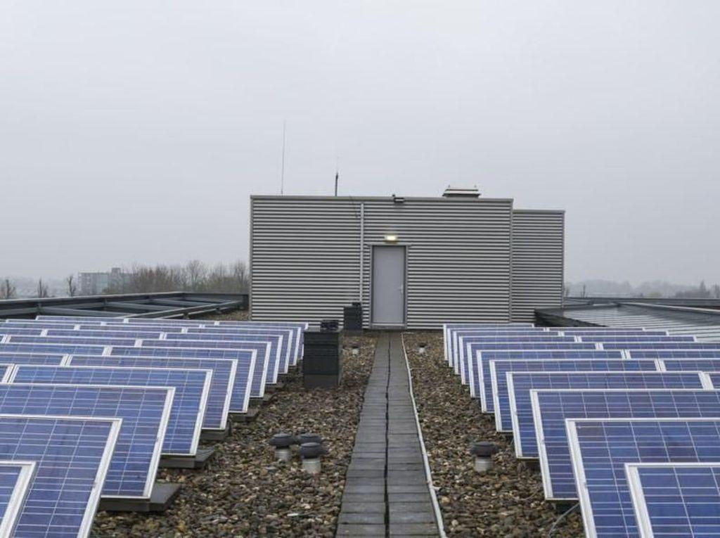 Nasib Bauran Energi Terbarukan Jalan di Tempat