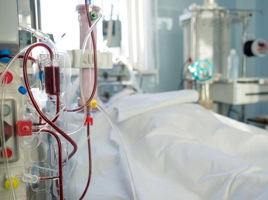 5 Fakta tentang Hemodialisis dan Selang Cuci Darah