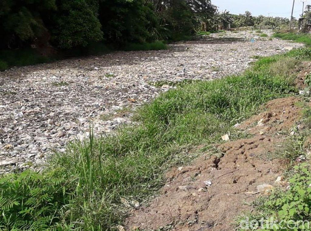 Euch! Potret Sungai Sampah di Tarumajaya Bekasi
