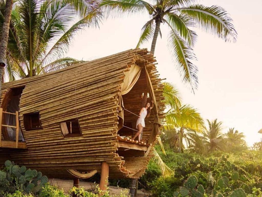 Foto: 5 Hotel Rumah Pohon Bergaya Mewah