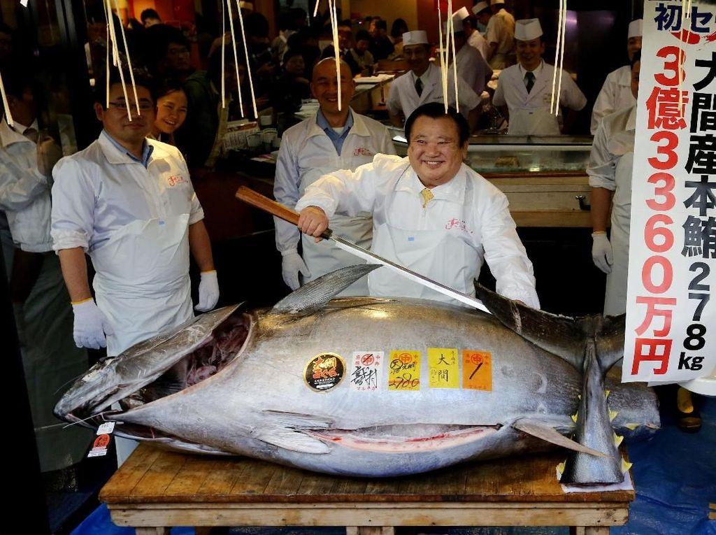 Mantap! Ikan Tuna Ini Dilelang Seharga Rp 43 Miliar