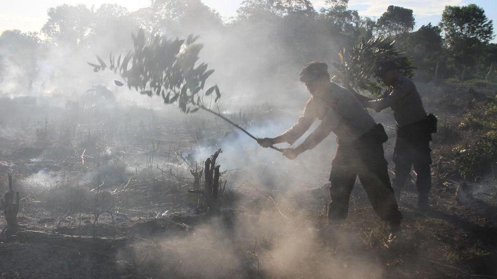 5 Hektar Lahan Gambut di Aceh Terbakar
