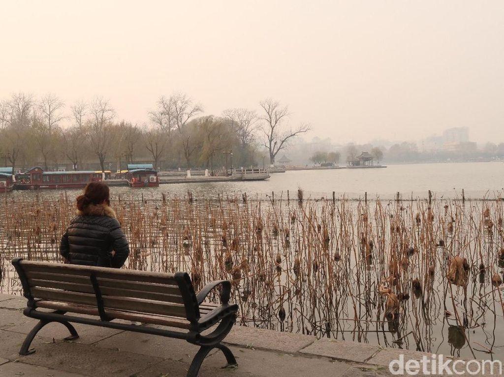 Cerita Taman Lotus dan Kodok yang Tak Bersuara di China