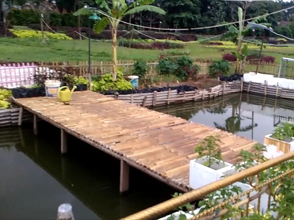Ternyata Ada Taman Kupu-kupu di RTH Cipinang Melayu