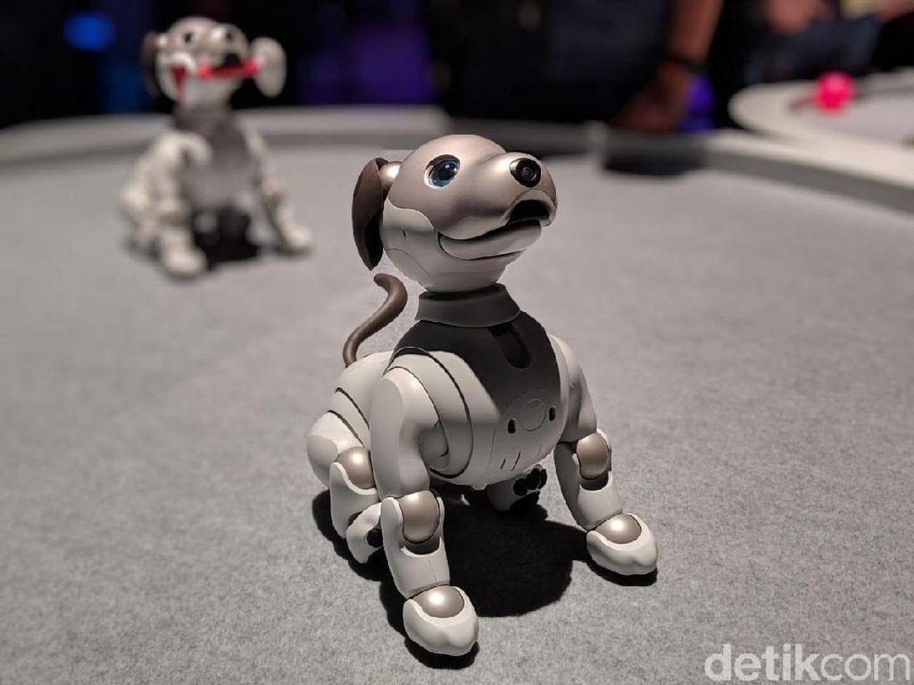 Robot Aibo dan Motor Venom Mejeng di Las Vegas, Mau Ngapain?