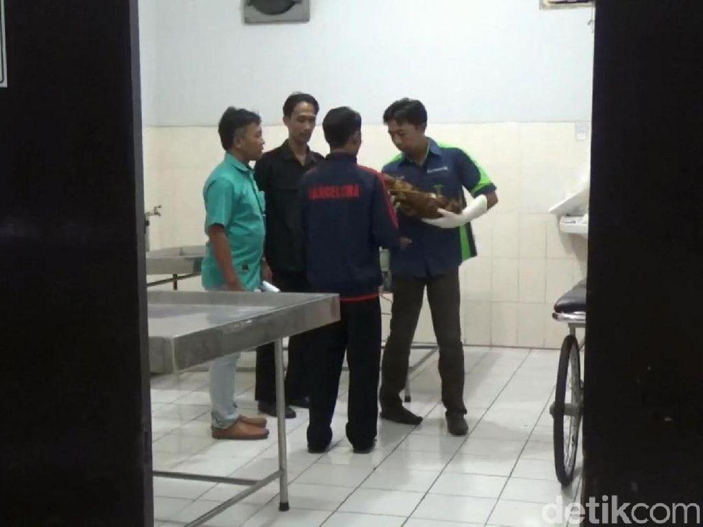 Hasil Autopsi, Bayi yang Dibuang di Kloset Tewas Akibat Dicekik