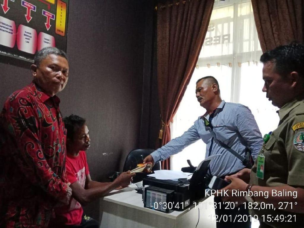 Pembantai Burung Rangkong di Riau Ditangkap