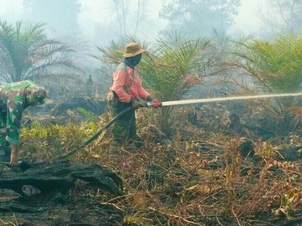 Ini 9 Jurus KLHK untuk Menjaga Bumi Indonesia