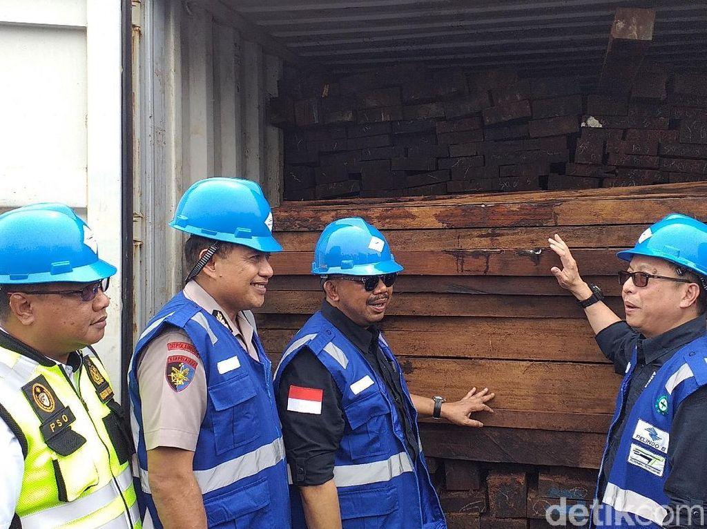 384 Kontainer Kayu Merbau Asal Papua Senilai Rp 100 Miliar Disita