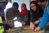 22 Mahasiswa Asing Belajar Olah Kopi Khas Muria di Kebun Kopi