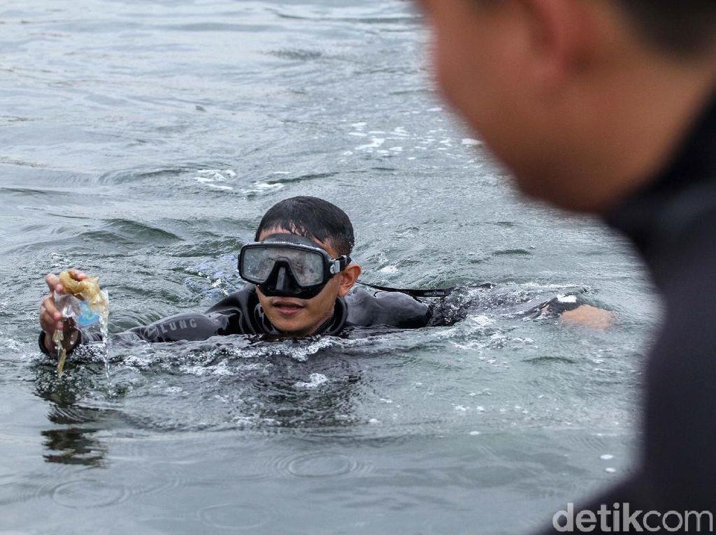 Yuk! Intip Aksi Bersih-bersih Pantai Ancol